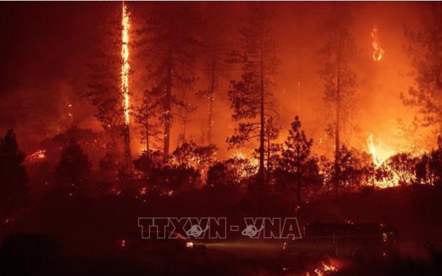 Cháy rừng lan rộng ở Canada, hàng chục nghìn người phải sơ tán - Ảnh 1.