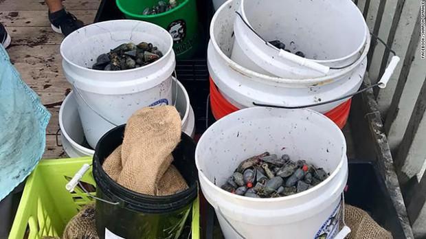 663 thợ lặn thiết lập kỉ lục Guinness nhờ cùng nhau dọn rác dưới đáy biển, có người vượt gần 2000 cây số đến tham gia - Ảnh 5.