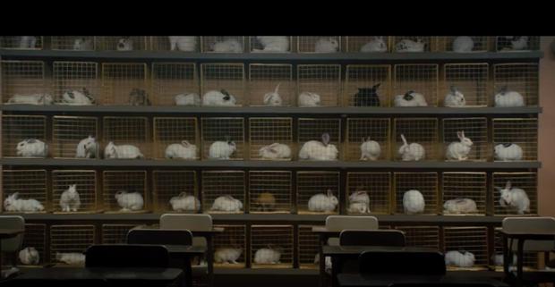 5 điểm trùng hợp kì lạ giữa phim hot nhất tuần Kí Sinh Trùng và US - phim kinh dị siêu sốt đầu năm - Ảnh 11.