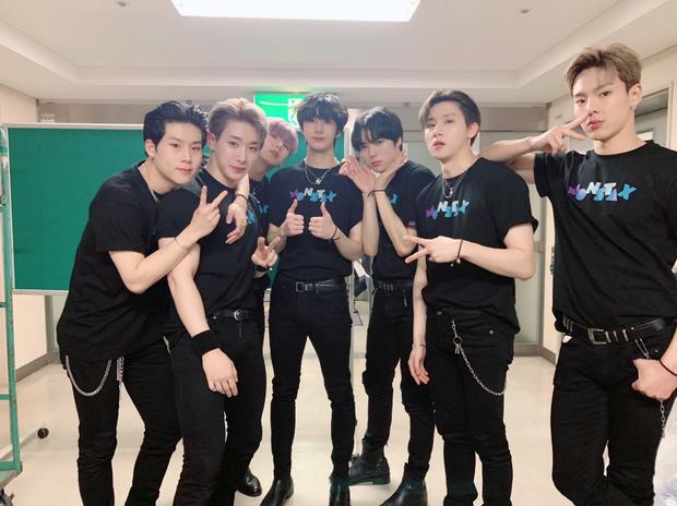 Xuất hiện nhóm Kpop mạnh ở Nhật sau SEVENTEEN: Vượt TWICE, IZ*ONE tại Billboard, lật đổ EXO, sánh ngang Super Junior - Ảnh 4.