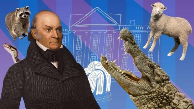 Những con cá sấu trong Nhà Trắng: Giai thoại buồn cười về những con thú cưng của tổng thống Mỹ trong lịch sử - Ảnh 3.