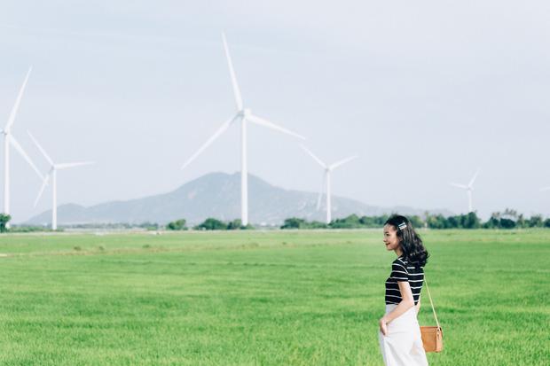 Cánh đồng quạt gió và vườn nho Ba Mọi tại Ninh Thuận: Hai địa điểm check-in siêu to khổng lồ, lại còn miễn phí nữa chứ! - Ảnh 2.