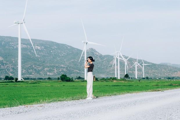 Cánh đồng quạt gió và vườn nho Ba Mọi tại Ninh Thuận: Hai địa điểm check-in siêu to khổng lồ, lại còn miễn phí nữa chứ! - Ảnh 4.