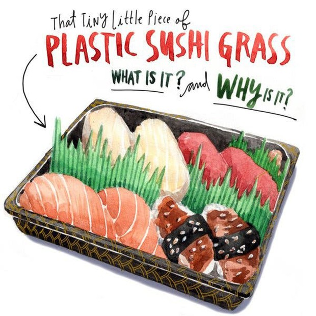 Hoá ra mấy ngọn cỏ xanh trông như nhựa trong hộp sushi mà chúng ta thường thấy không phải để làm màu - Ảnh 1.