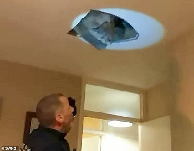 Bị truy đuổi, tội phạm trốn lên mái nhà nhưng lại làm sập trần trúng ngay anh cảnh sát - Ảnh 3.