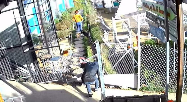 Đôi nam nữ bị tố bê trộm chó sau khi tự ý chui qua hàng rào vào quán cafe Đà Lạt chụp ảnh dù chưa đến giờ mở cửa - Ảnh 3.