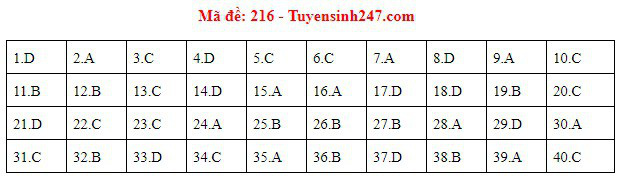 Đáp án đề thi môn Vật lý THPT quốc gia 2019 (tất cả 24 mã đề) - Ảnh 4.