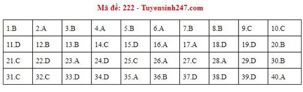 Đáp án đề thi môn Vật lý THPT quốc gia 2019 (tất cả 24 mã đề) - Ảnh 6.