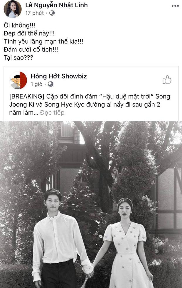 Dân mạng Việt sốc trước tin Song - Song ly hôn: Động lực để yêu và cưới của tôi tan tành rồi! - Ảnh 4.