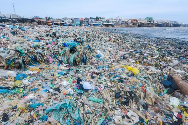 Người Việt và thói quen tiêu dùng thông minh để bảo vệ môi trường - Ảnh 2.