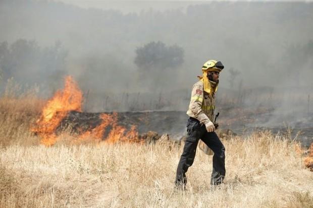 Nguyên nhân không ngờ gây cháy rừng Tây Ban Nha giữa lúc nắng nóng - Ảnh 1.