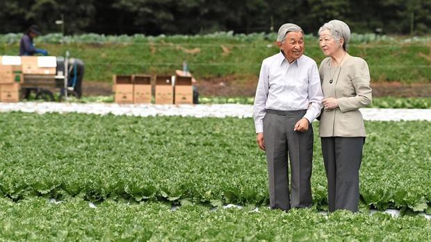 Cuộc sống của vợ chồng Nhật hoàng sau 2 tháng thoái vị, đáng lo nhất là cựu Hoàng hậu Michiko khiến người dân đứng ngồi không yên - Ảnh 2.