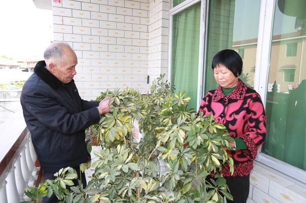 Gia đình đẹp nhất Trung Quốc: Tứ đại đồng đường sống cùng mái nhà và quan niệm chỉ cần cho đi không cần báo đáp thì sẽ hạnh phúc - Ảnh 2.