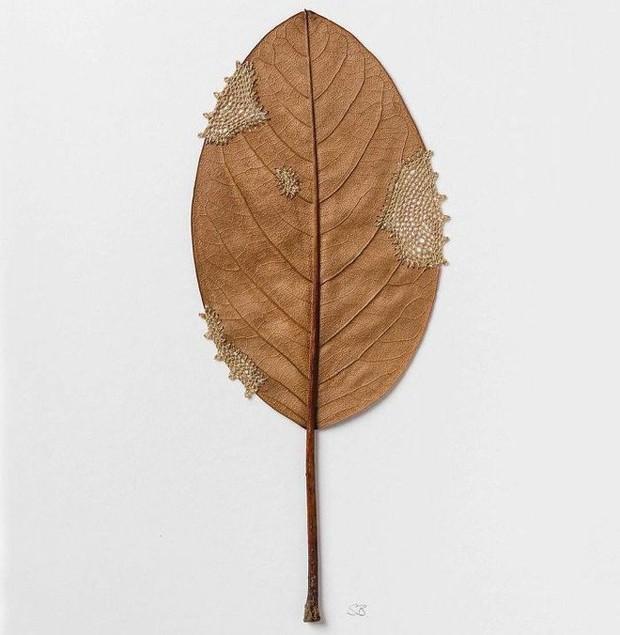 23 tác phẩm độc đáo cho thấy lá cây cũng có thể trở thành tuyệt tác nghệ thuật - Ảnh 22.