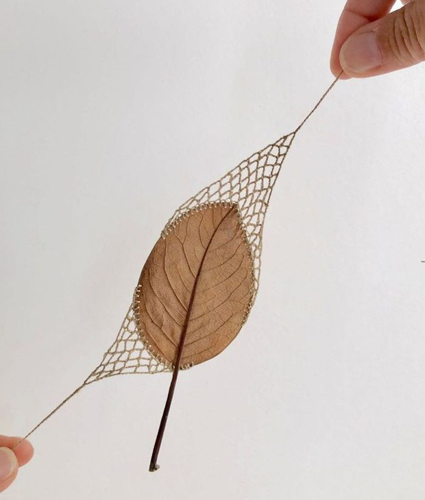 23 tác phẩm độc đáo cho thấy lá cây cũng có thể trở thành tuyệt tác nghệ thuật - Ảnh 14.