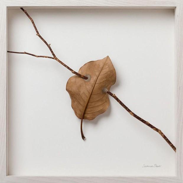 23 tác phẩm độc đáo cho thấy lá cây cũng có thể trở thành tuyệt tác nghệ thuật - Ảnh 16.