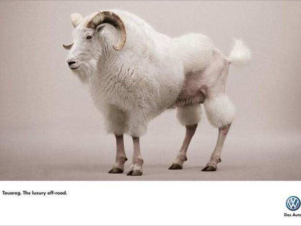 Đây là 24 ảnh quảng cáo ấn tượng đến mức bạn không thể nhấn nút chuyển trang - Ảnh 16.