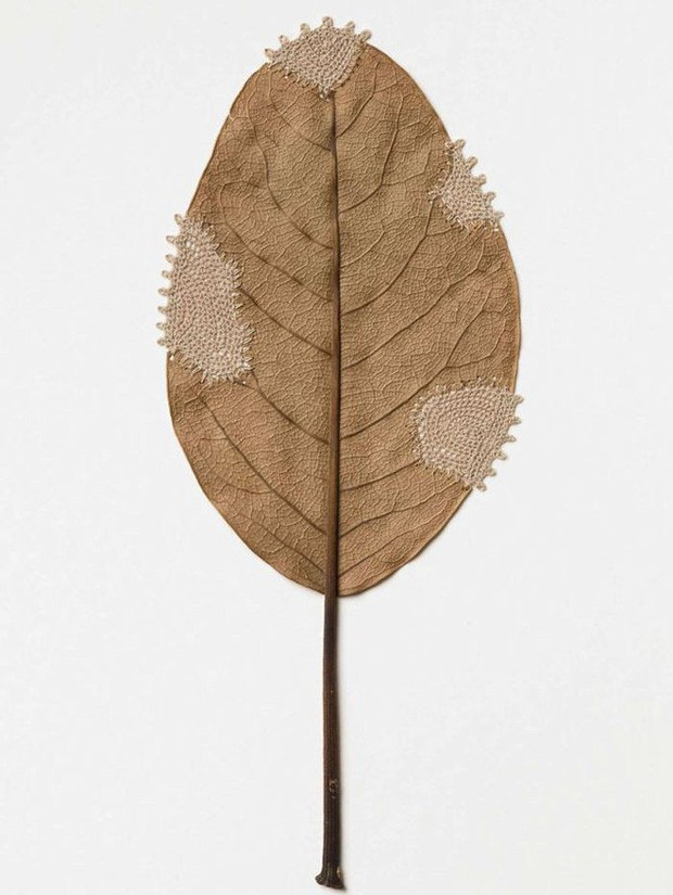 23 tác phẩm độc đáo cho thấy lá cây cũng có thể trở thành tuyệt tác nghệ thuật - Ảnh 12.