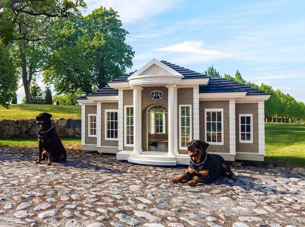 Nhiều tiền quá không biết để làm gì, đã có công ty Anh giúp bạn xây villa bạc tỷ chỉ dành riêng cho cún cưng đây - Ảnh 1.