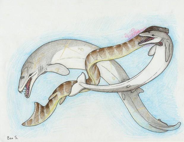 Loài động vật cổ đại nào đáng sợ nhất nếu chúng còn tồn tại đến ngày nay? - Ảnh 6.