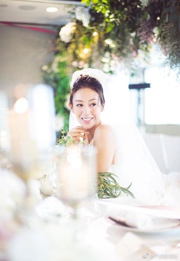 Dàn sao khủng tới dự đám cưới bí mật của mỹ nhân Bao la vùng trời, Âu Dương Chấn Hoa tái ngộ Cổ Thiên Lạc - Ảnh 1.