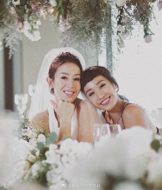 Dàn sao khủng tới dự đám cưới bí mật của mỹ nhân Bao la vùng trời, Âu Dương Chấn Hoa tái ngộ Cổ Thiên Lạc - Ảnh 10.