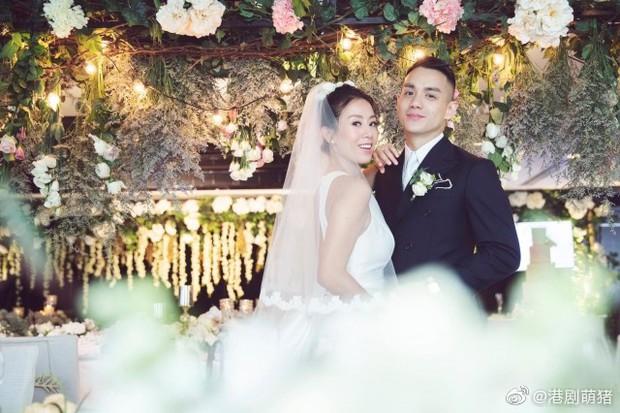 Dàn sao khủng tới dự đám cưới bí mật của mỹ nhân Bao la vùng trời, Âu Dương Chấn Hoa tái ngộ Cổ Thiên Lạc - Ảnh 5.