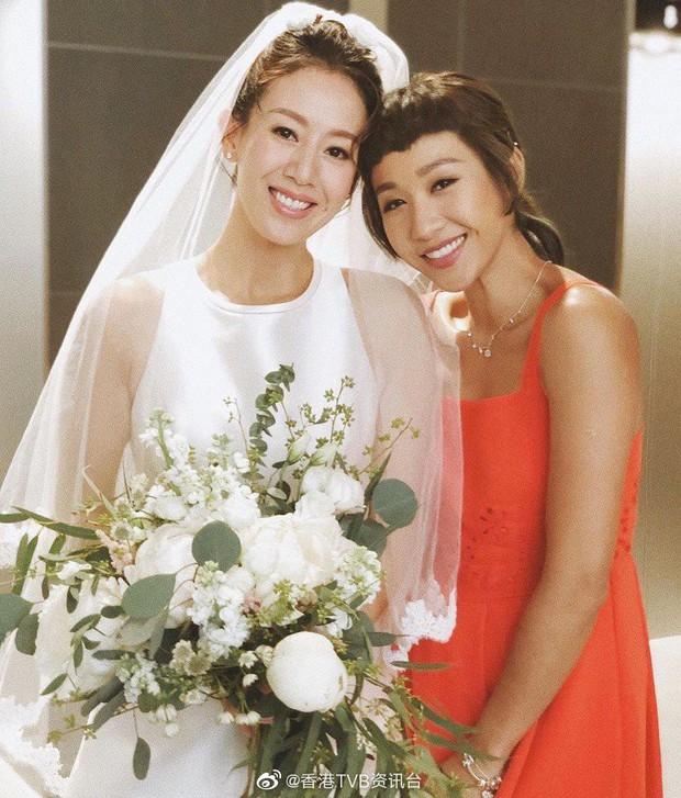 Dàn sao khủng tới dự đám cưới bí mật của mỹ nhân Bao la vùng trời, Âu Dương Chấn Hoa tái ngộ Cổ Thiên Lạc - Ảnh 11.
