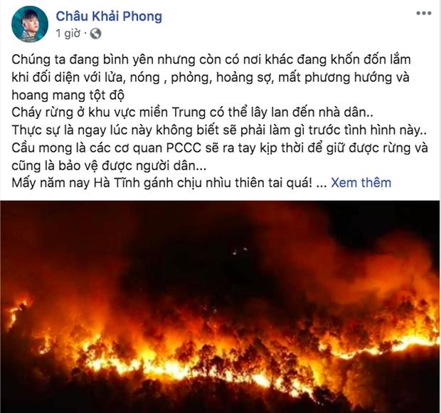 Đỗ Mỹ Linh, Hoà Minzy cùng sao Vbiz hướng về vụ cháy rừng kinh hoàng ở Hà Tĩnh - Ảnh 4.
