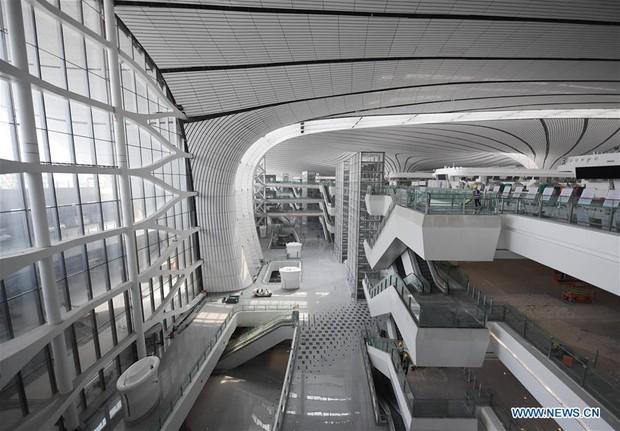 """Ná thở với sân bay """"sao biển"""" lớn nhất thế giới ở Trung Quốc, rộng bằng... 63 quảng trường Thiên An Môn, từ đầu nọ sang đầu kia dài cả cây số - Ảnh 6."""