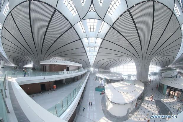 """Ná thở với sân bay """"sao biển"""" lớn nhất thế giới ở Trung Quốc, rộng bằng... 63 quảng trường Thiên An Môn, từ đầu nọ sang đầu kia dài cả cây số - Ảnh 9."""