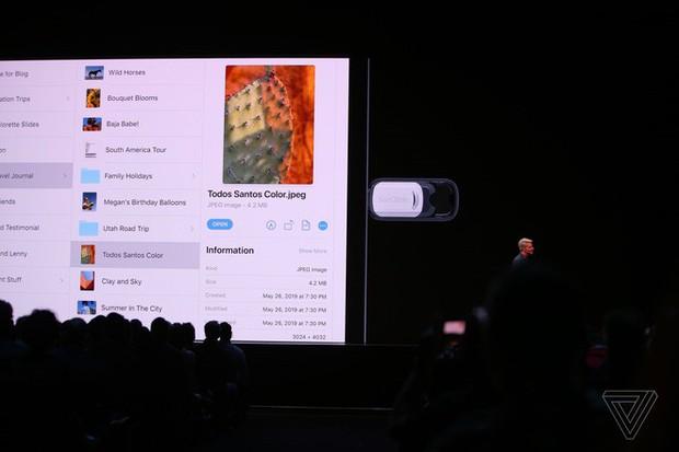 Apple ra mắt iPadOS dành riêng cho iPad: Giao diện màn hình chính mới, hỗ trợ ổ cứng USB, download tập tin bằng Safari, đa nhiệm tốt hơn - Ảnh 3.