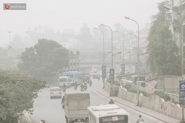 Ngày Môi trường Thế giới: những con số đáng báo động về thực trạng ô nhiễm không khí tại Hà Nội và TP Hồ Chí Minh - Ảnh 2.