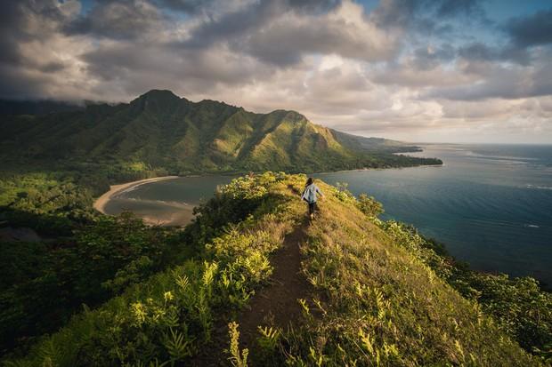 """Du khách """"ngã ngửa"""" toàn tập khi đến """"thiên đường biển"""" Hawaii vì tất cả những hình ảnh hiền hoà, thư giãn từng thấy trên mạng giờ chỉ còn là mộng tưởng - Ảnh 2."""