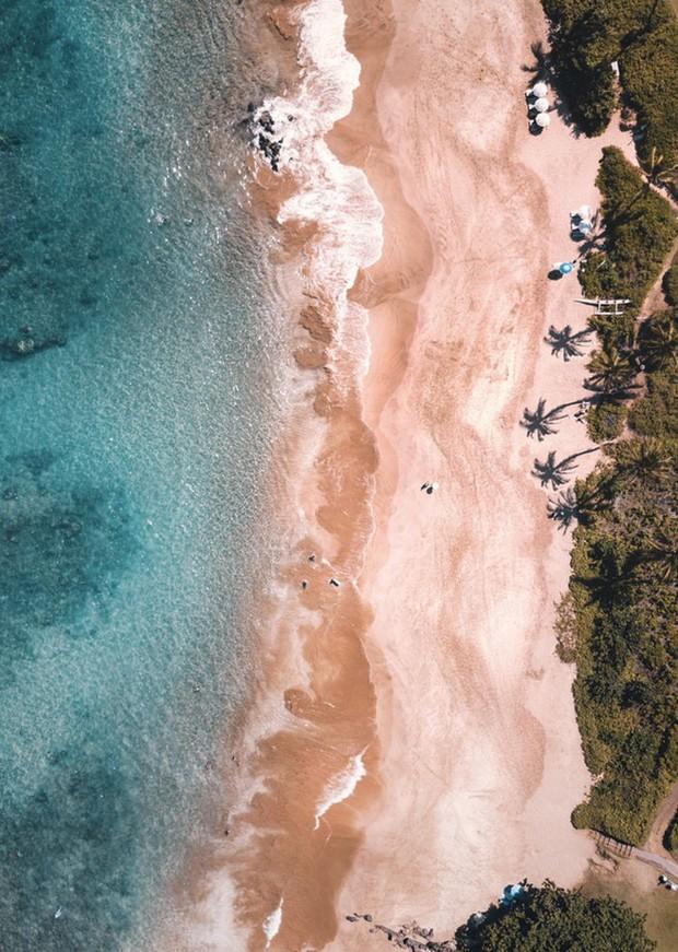 """Du khách """"ngã ngửa"""" toàn tập khi đến """"thiên đường biển"""" Hawaii vì tất cả những hình ảnh hiền hoà, thư giãn từng thấy trên mạng giờ chỉ còn là mộng tưởng - Ảnh 8."""