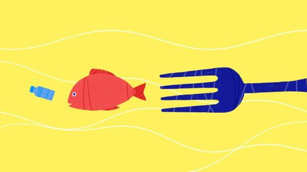 Mỗi người Mỹ đang ăn 74.000 mảnh rác nhựa mỗi năm - câu chuyện đáng buồn đang xảy ra trên toàn thế giới - Ảnh 2.