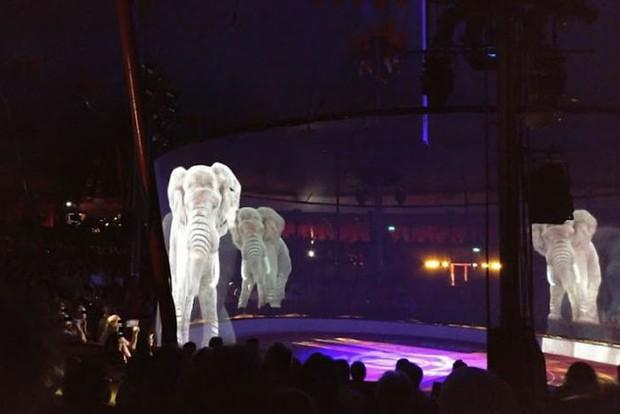 Phản đối hành vi ngược đãi động vật, rạp xiếc 43 năm ở Đức sử dụng kĩ xảo Hologram thay thế cực kỳ mãn nhãn - Ảnh 5.