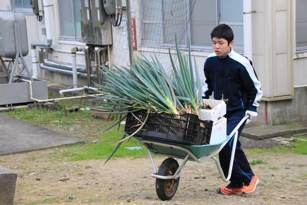 Trường học cô đơn nhất Nhật Bản: Mở cửa chỉ để đón 1 nam sinh, ngày cậu ấy tốt nghiệp trường cũng đóng cửa luôn - Ảnh 5.