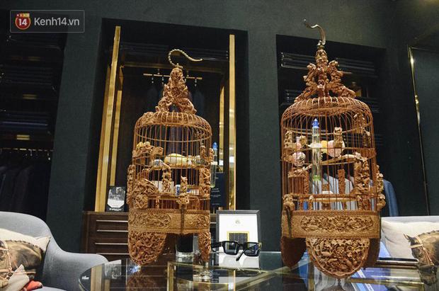 Gặp ông trùm thời trang với bộ sưu tập chim khủng 10 tỷ đồng: Chim nằm điều hòa, có camera an ninh và hai nhân viên chăm sóc đặc biệt - Ảnh 6.