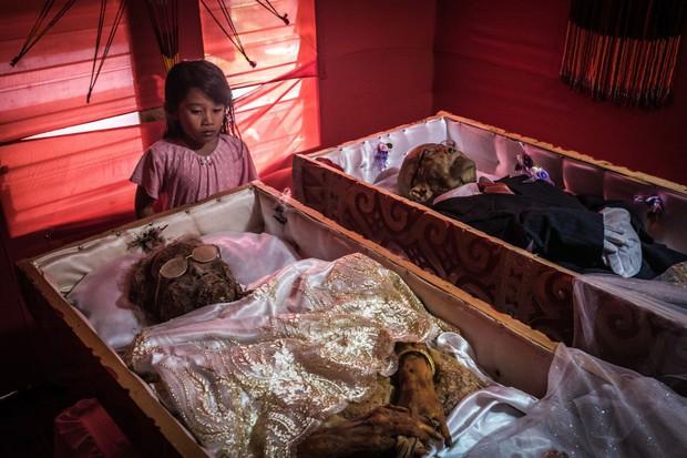 Bộ lạc văn minh nhưng có tập tục mai táng kỳ lạ nhất thế giới: Sống chung với thi thể đến khi nào con cháu đủ tiền tỷ làm đám ma thì chôn - Ảnh 17.