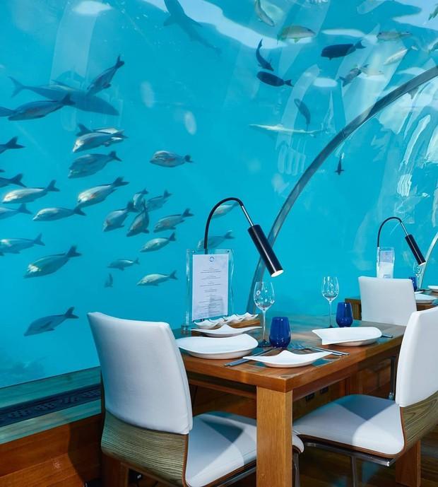 Du lịch qua màn ảnh nhỏ với loạt resort và khách sạn đỉnh nhất thế giới: Trên đời này hoá ra có nhiều nơi kì diệu đến vậy!  - Ảnh 14.