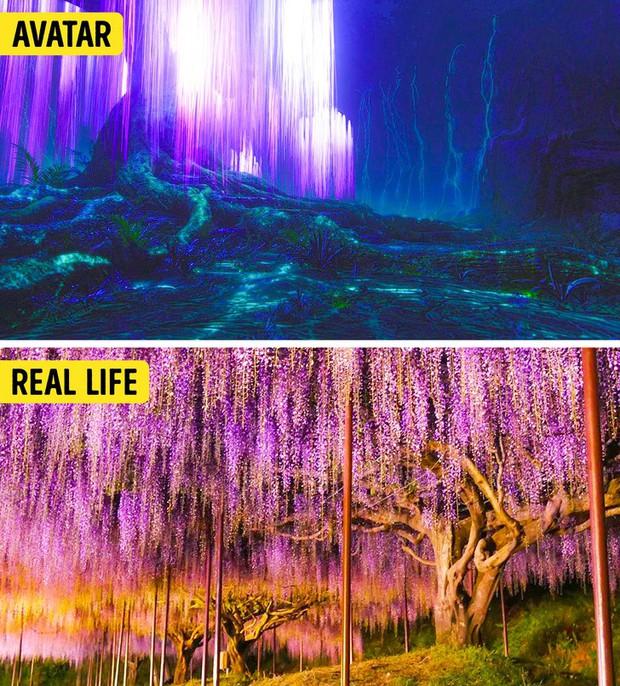14 cảnh đẹp trong phim hoá ra có ngoài đời thực, riêng Infinity War và Avatar sẽ khiến bạn ngạc nhiên nhất - Ảnh 1.