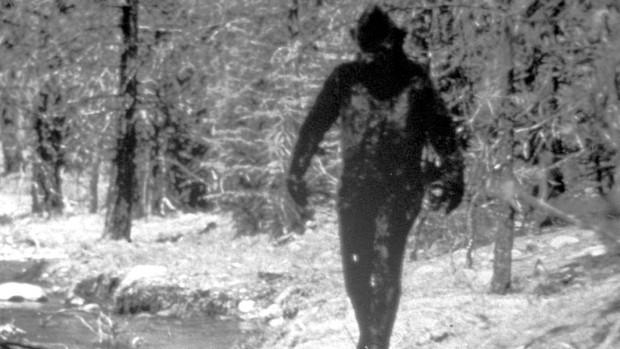 Người đàn ông gửi lông Bigfoot cho FBI đòi phân tích, 40 năm sau mới nhận được đáp án lúc gần đất xa trời - Ảnh 3.