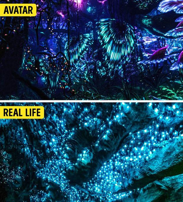 14 cảnh đẹp trong phim hoá ra có ngoài đời thực, riêng Infinity War và Avatar sẽ khiến bạn ngạc nhiên nhất - Ảnh 7.