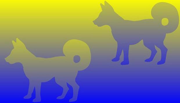 Bức hình gây lú nhất MXH hôm nay: Rõ ràng là một lam một xanh ngọc, thế mà hóa ra lại cùng một màu? - Ảnh 5.