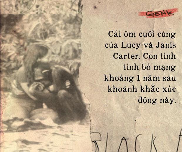 Câu chuyện đau lòng về Lucy, con tinh tinh vẫn tưởng mình là người - Ảnh 6.