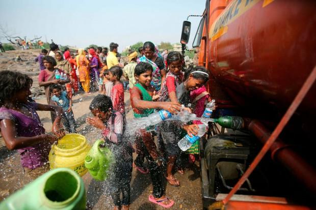 Nắng nóng gay gắt ở Ấn Độ: Đâm chết nhau vì tranh nước, hổ bỏ rừng vào làng tìm nguồn nước - Ảnh 8.