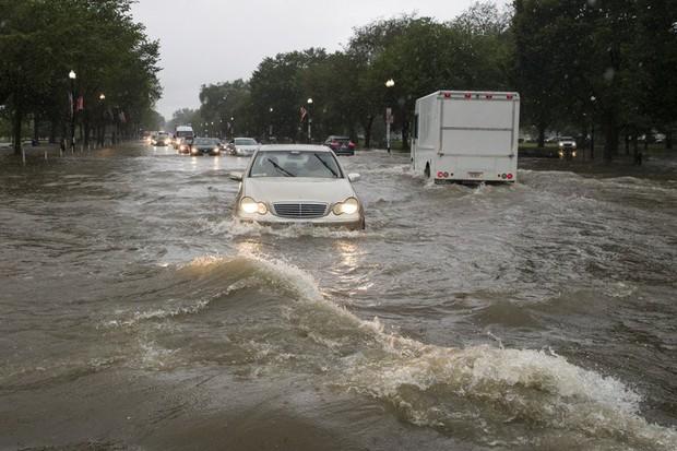 Video: Mưa lớn biến đường phố thủ đô Mỹ thành sông, Nhà Trắng cũng không thoát - Ảnh 6.