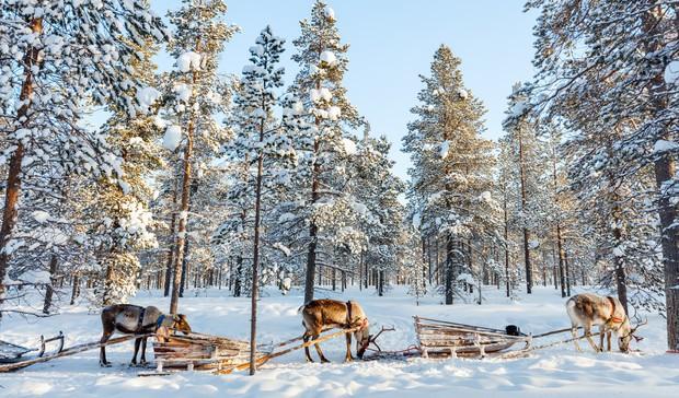 Cận cảnh cuộc sống kỳ lạ tại vùng đất Mặt trời mọc lúc nửa đêm: Lạnh giá quanh năm, nhưng chỉ dựa vào thiên nhiên cũng đủ sống - Ảnh 1.