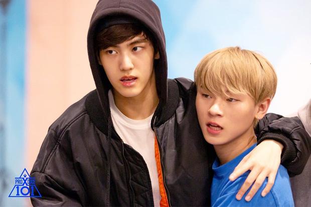 5 cặp anh em tình bể bình của Produce X 101: Host Lee Dong Wook bất ngờ sánh đôi cùng nam thí sinh! - Ảnh 11.